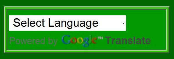 Google Translate Tool