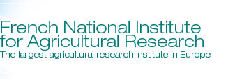 French National Institute for Agricultural Research