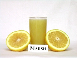 'Marsh' grapefruit
